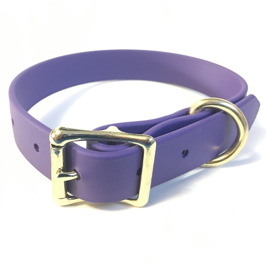 Purple Proof Collar - N.G. Collars