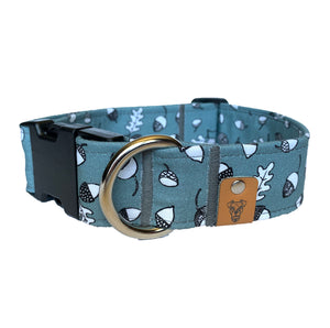 Acorns Buckle Collar