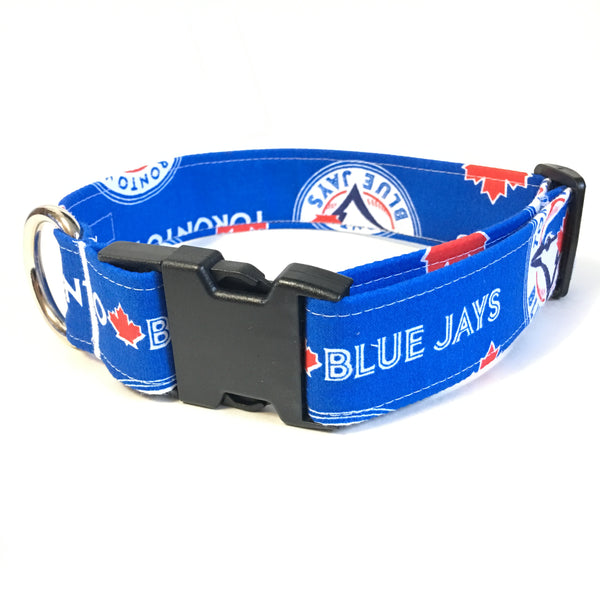 Blue Jays Buckle Collar - N.G. Collars