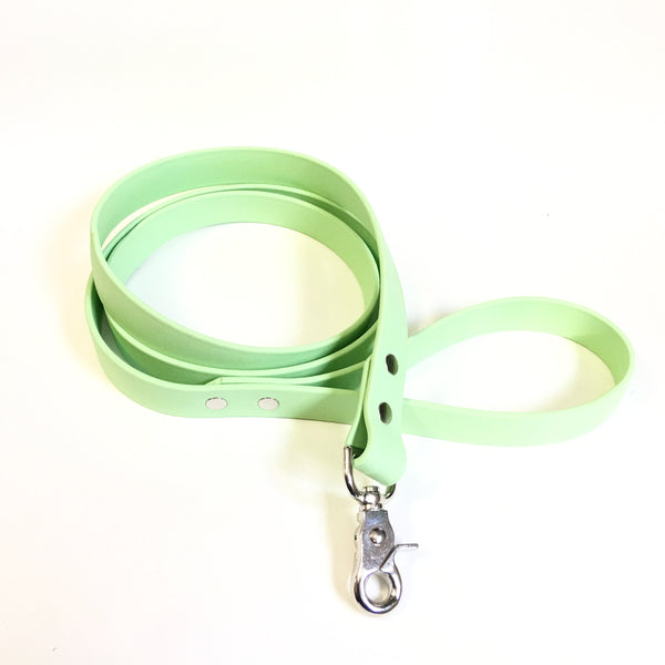 Mint Proof Leash - N.G. Collars