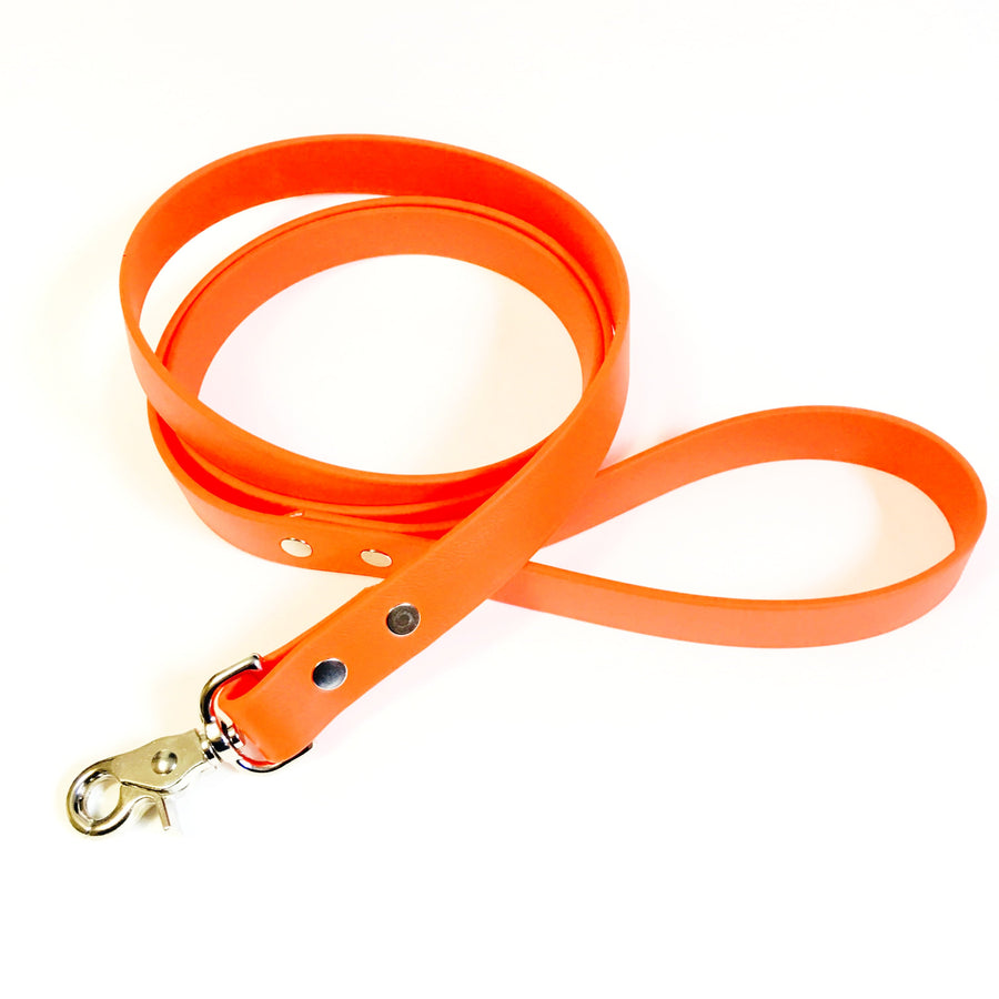 Orange Proof Leash