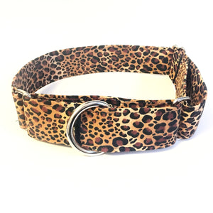 Jungle Fever Martingale Collar - N.G. Collars