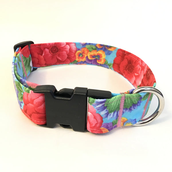Miss Daisy Buckle Collar - N.G. Collars