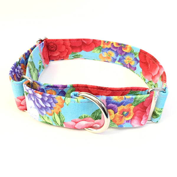 Miss Daisy Martingale Collar - N.G. Collars