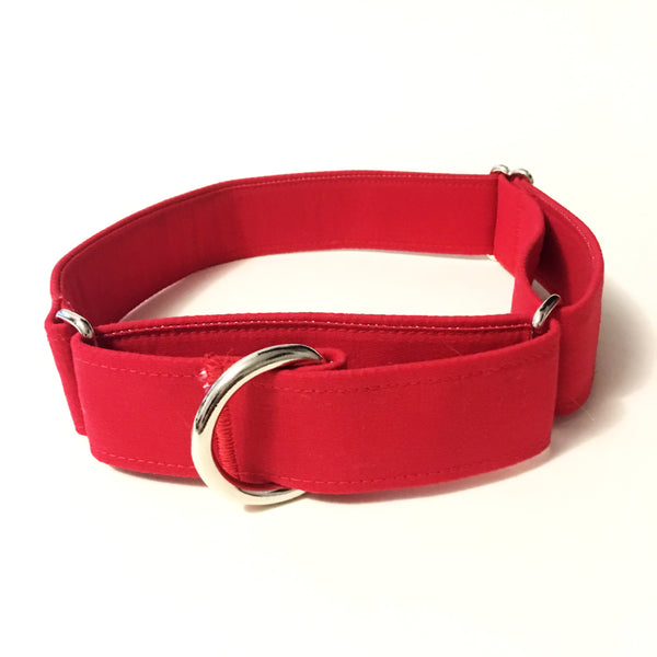 Apple a Day Martingale Collar - N.G. Collars