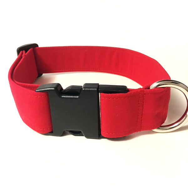 Apple a Day Buckle Collar - N.G. Collars