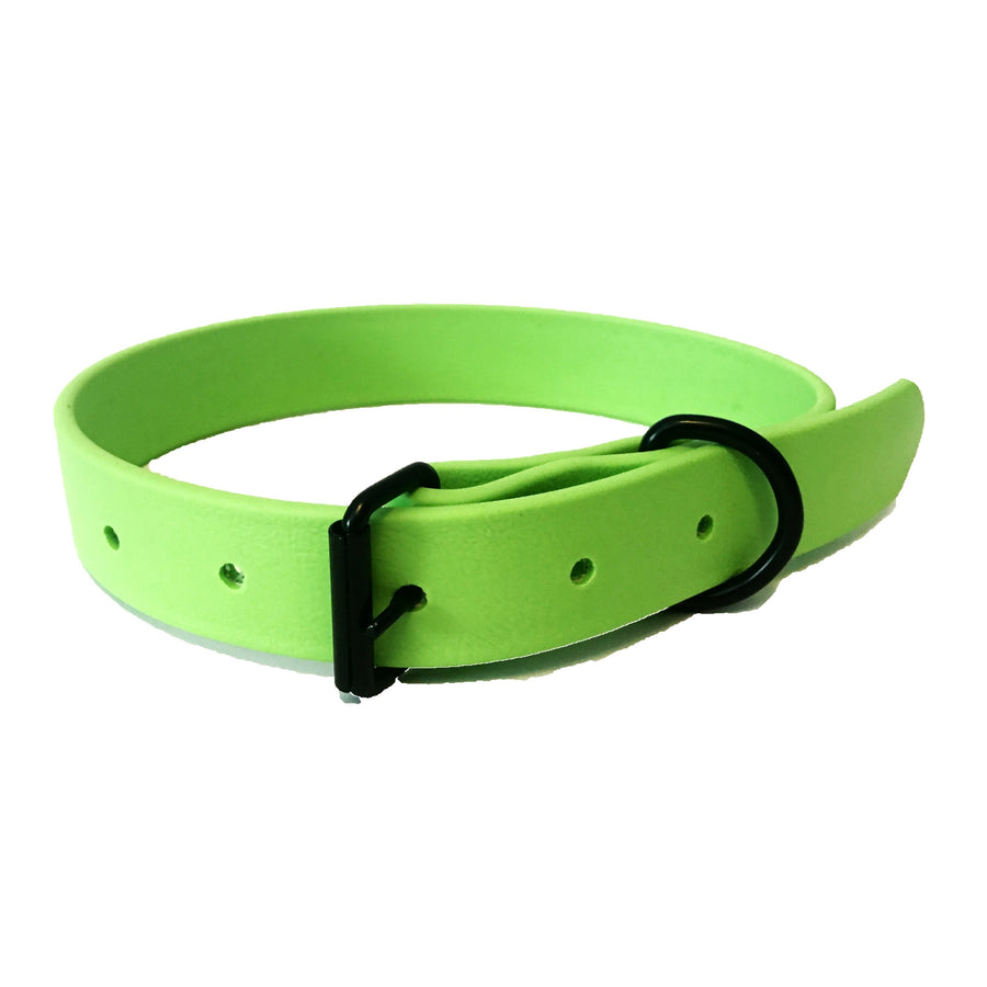 Lime Green Proof Collar