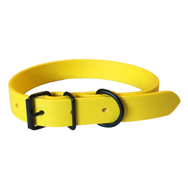 Yellow Proof Collar - N.G. Collars