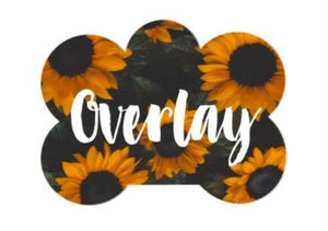 Sunflowers Pet Tag - N.G. Collars