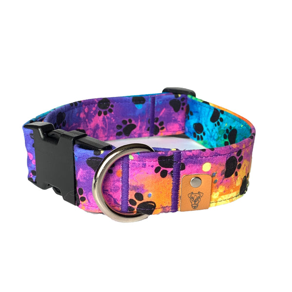 Allies Buckle Collar - N.G. Collars