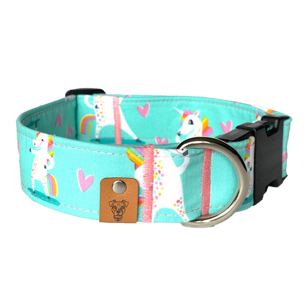 Individuality Buckle Collar - N.G. Collars