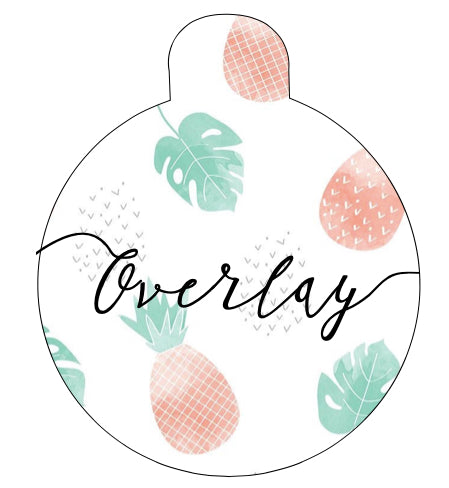 Pineapple Pet Tag