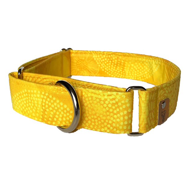 Zesty Lemon Martingale Collar - N.G. Collars