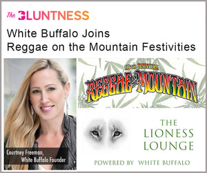 "The Lioness Lounge at Reggae on the Mountain Featured in ""The Bluntness"""