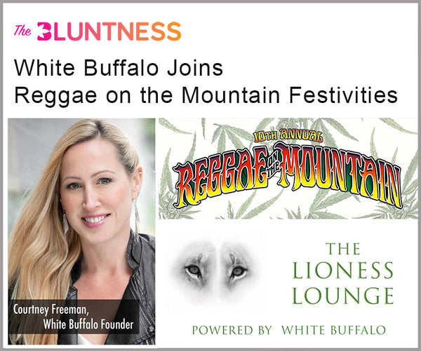 The Bluntness Article Reggae on the Mountain