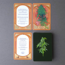 Pre-Order the Oracle of the Green Rose