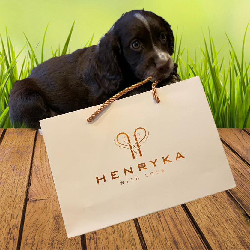 How & Why Dogs Became Man's Best Friend | Henryka Jewellery