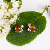 Snail in Shell Earrings in Silver and Amber