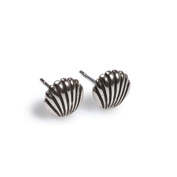 Sea Shell Stud Earrings in Silver