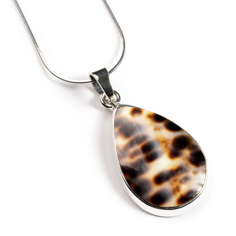 Tiger Cowrie Seashell Necklace - Natural Designer Gemstone