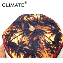 CLIMATE 3D Coconut Surfing Wood Peak